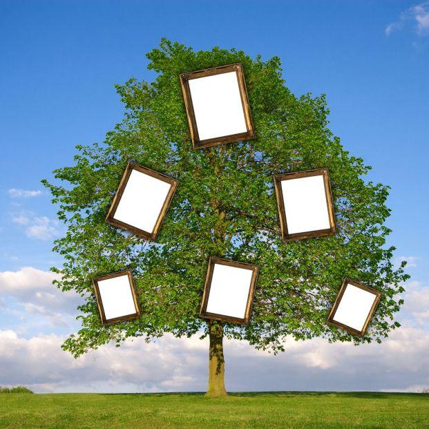 Cómo investigar tu árbol genealógico