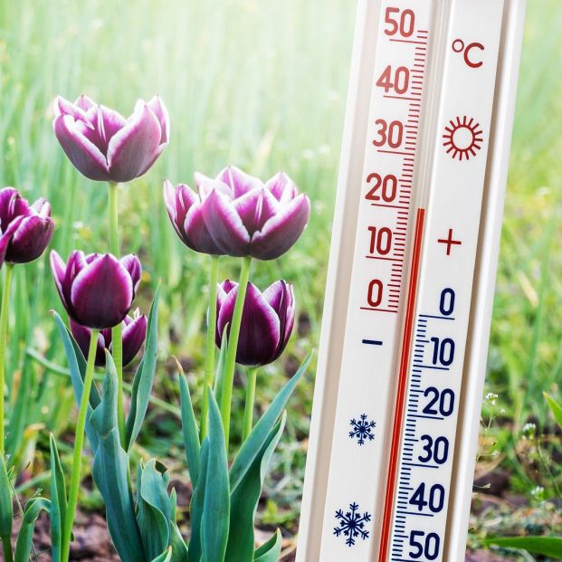 Diferencias entre temperatura y sensación térmica; cómo afecta cada valor