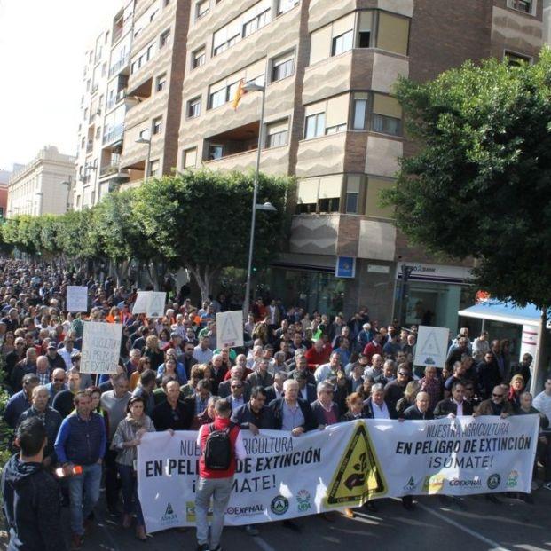 Asaja, COAG y UPA convocan movilizaciones en toda España en defensa del mundo rural