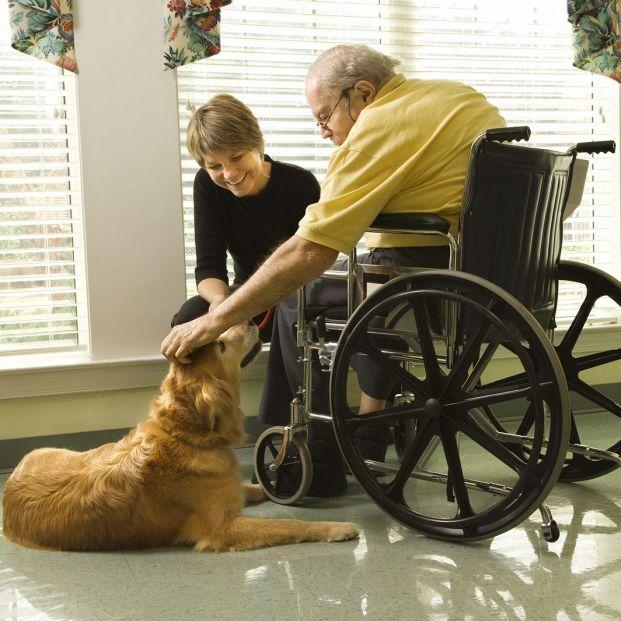¿Qué es la terapia con mascotas para los mayores?