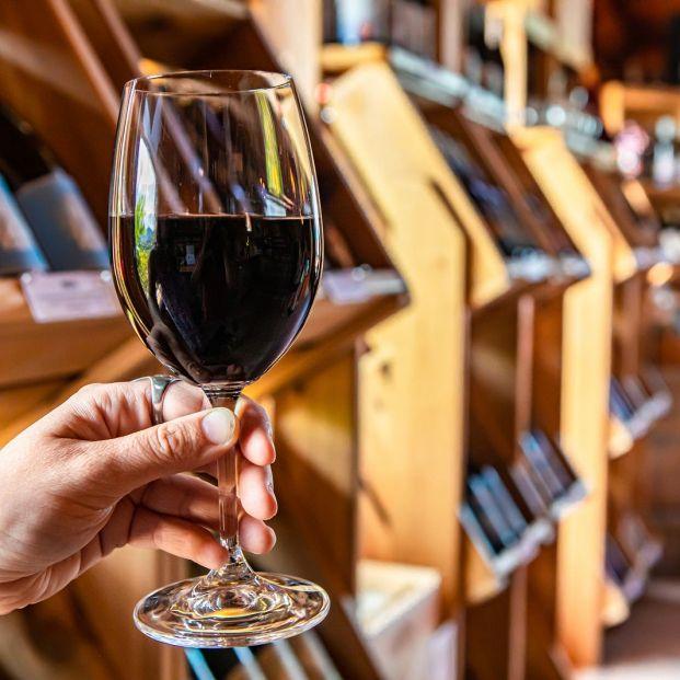 Conoce la aplicación Riojawine con toda la información sobre bodegas, vinos o rutas de enoturismo