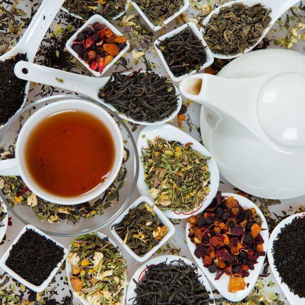 Cuáles son las diferencias nutricionales entre el té rojo, blanco, verde y negro
