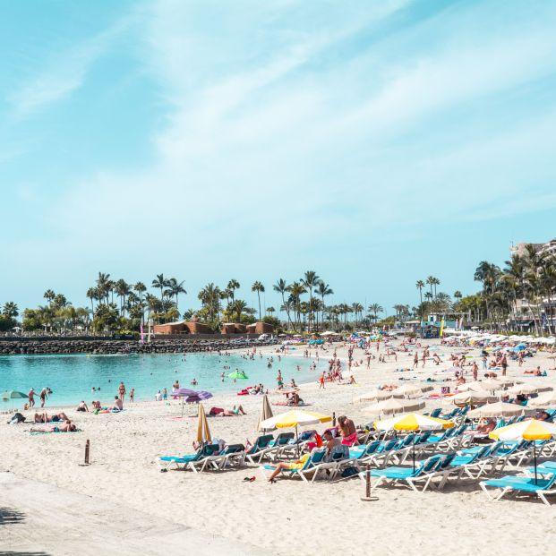 El sector turístico pide al nuevo director del Imserso una revisión urgente de los viajes
