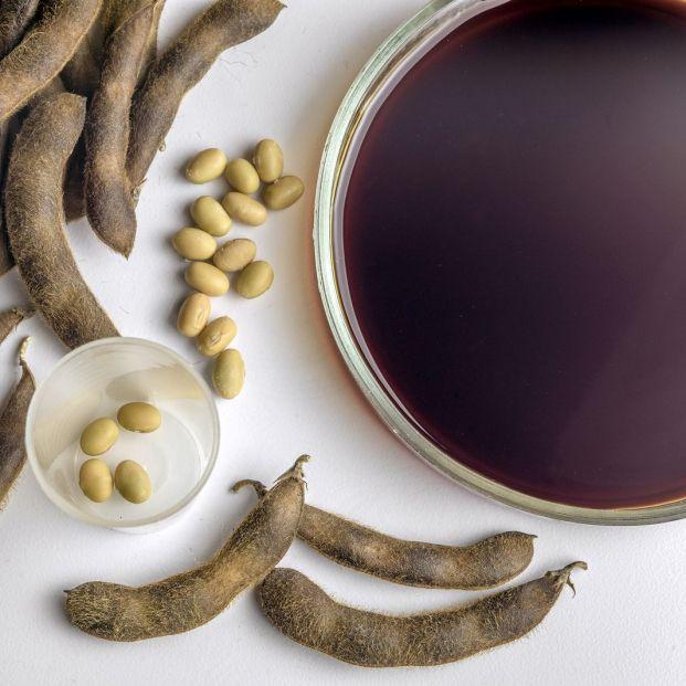 Cuáles son los beneficios para los mayores de los productos de soja fermentados