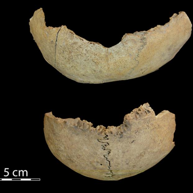 Caníbales del Neolítico en Antequera