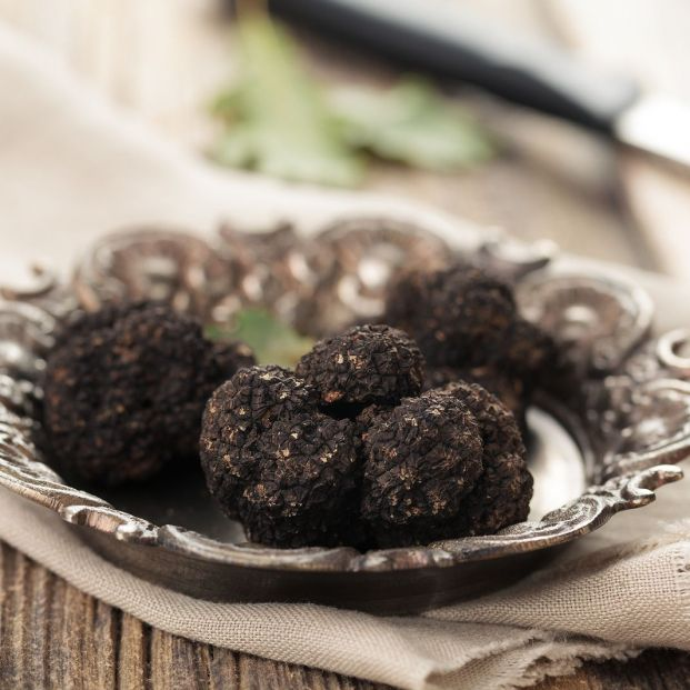 La trufa negra, el tesoro de la alta cocina (bigstock)