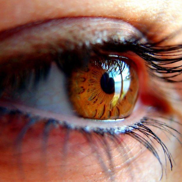 La mitad de la población afectada por glaucoma lo desconoce