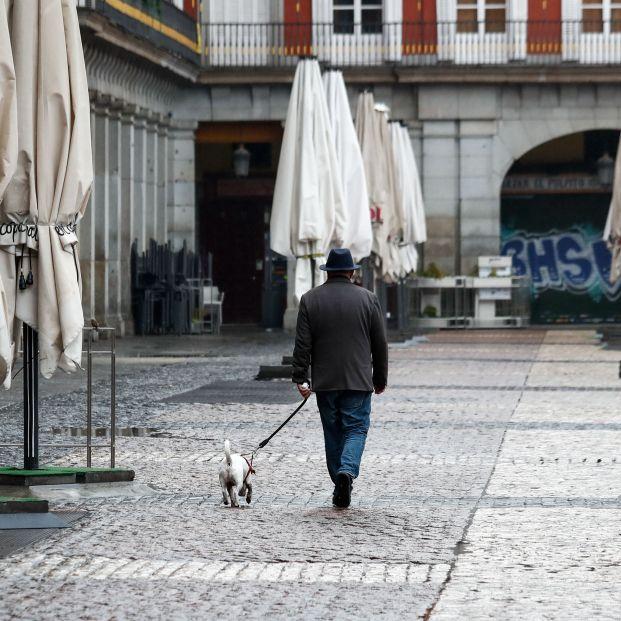 Guardia Civil detecta y multa a personas que salen a comprar y pasear el perro con mucha frecuencia