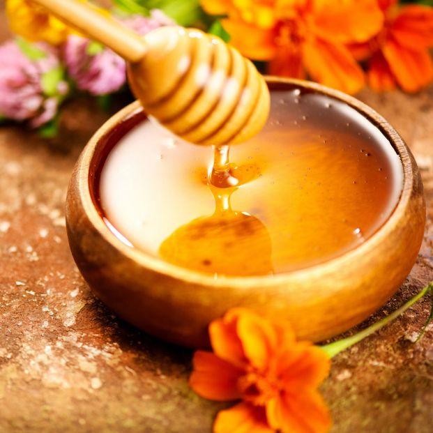 Conoce cuáles son las principales propiedades de la miel (Bigstcok)
