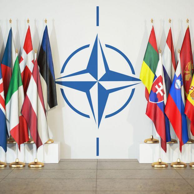 Banderas de miembros de la OTAN (BigStock)
