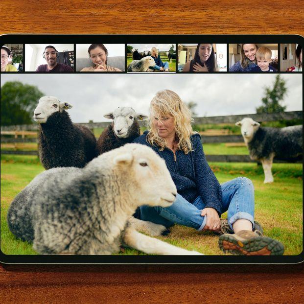 ¡Cuidado! La app de videollamadas Zoom tiene un fallo de seguridad que permite robar credenciales