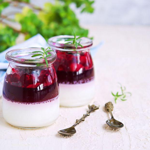 ¿Sabes cómo elaborar deliciosos postres sin necesidad de utilizar harina?. Panna Cotta. Foto: Bigstock