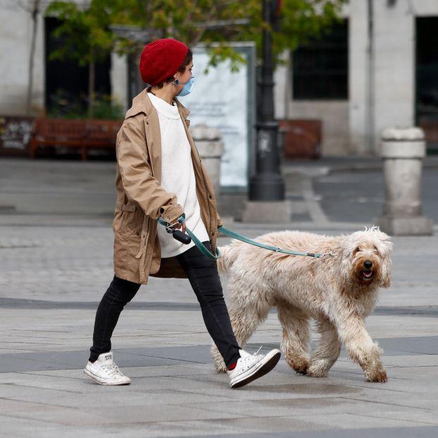 UVI24, la app que conecta a personas mayores con perro con vecinos que los pueden pasear