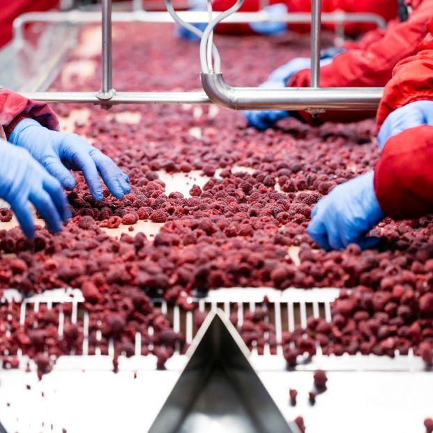 La industria alimentaria presenta un plan para relanzar el sector