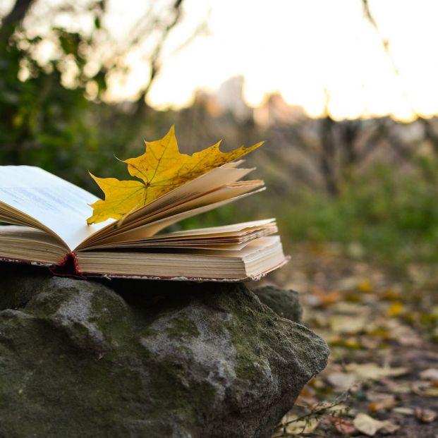 5 estupendos libros que tratan sobre la soledad
