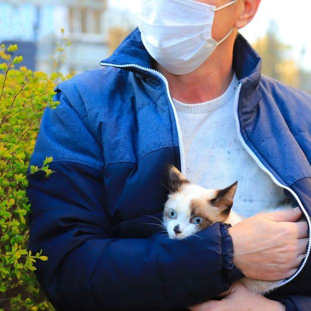 Las personas pueden transmitir el coronavirus a los gatos, pero no al revés