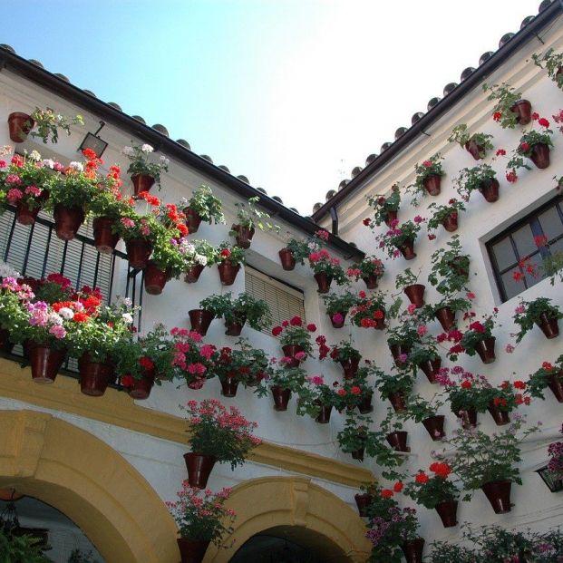 Córdoba recupera tras más de cien años los patios este Jueves Santo