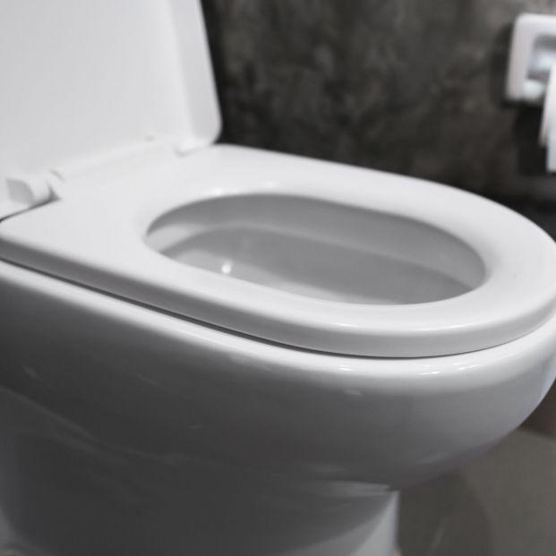 Esta es la solución más barata para tu inodoro atascado