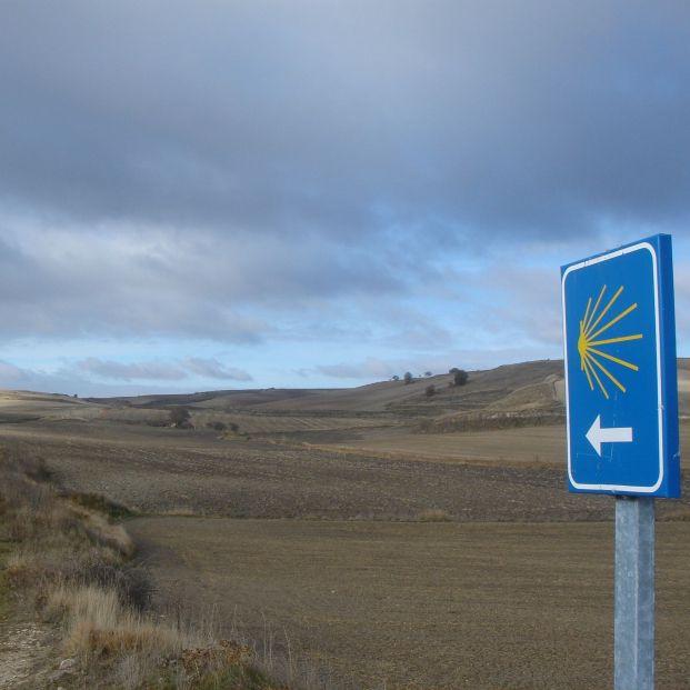 Señalización para seguir un sendero del camino (Pexels)