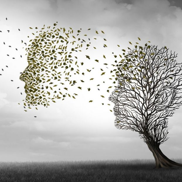 Una investigación abre la posibilidad a nuevos enfoques farmacológicos para tratar el alzhéimer