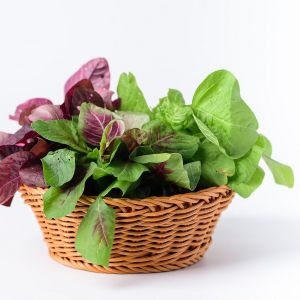 bigstock Green And Red Thai Spinach Lea 364654822