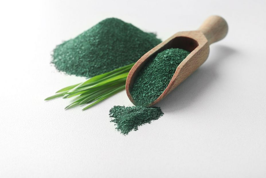 bigstock Composition With Spirulina Alg 283421329