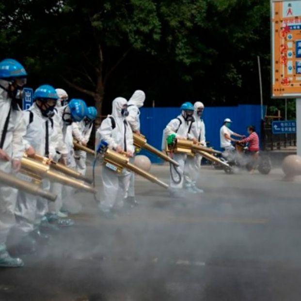 Científicos chinos advierten sobre un nuevo virus de la gripe con riesgo de pandemia