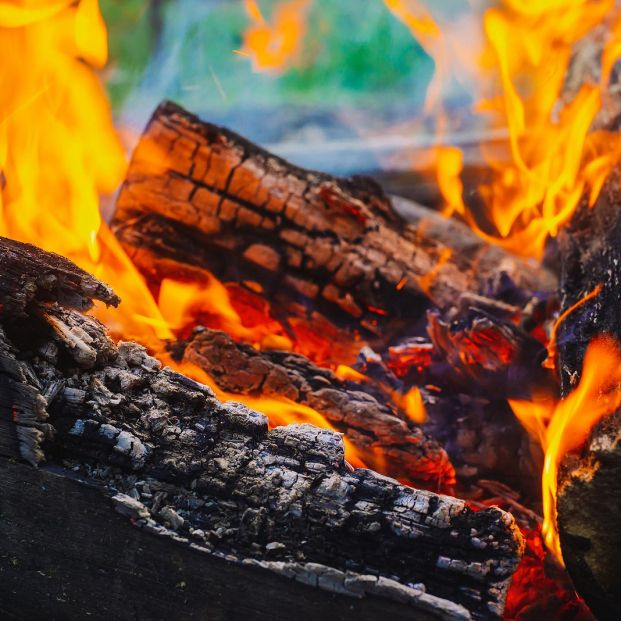 bigstock Smoldered Logs Burned In Vivid 298483846