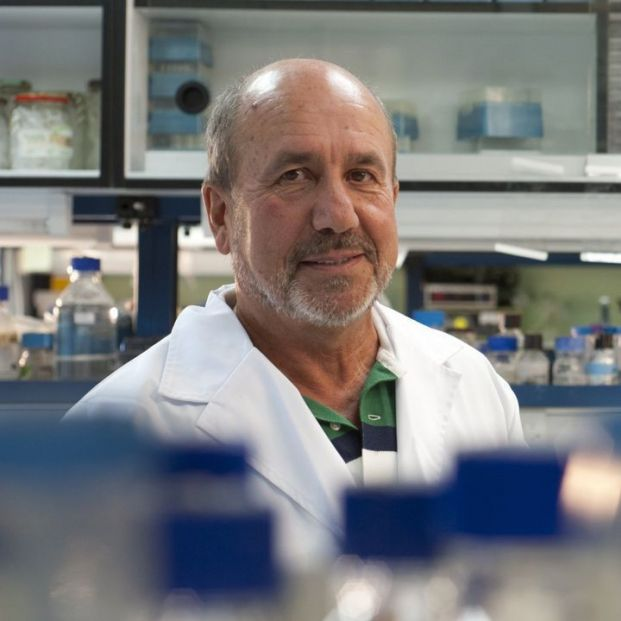 El CSIC vaticina que hasta finales de 2021 no habrá una vacunación global contra el coronavirus