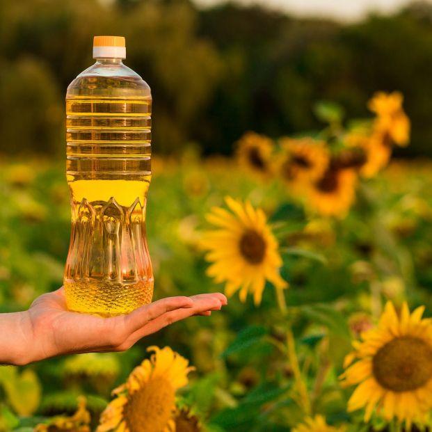 aceite de girasol (bigstock)