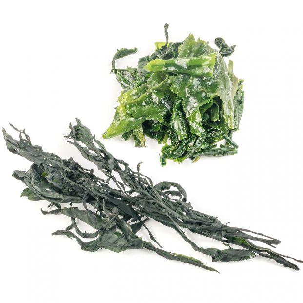 La espirulina y otras algas comestibles