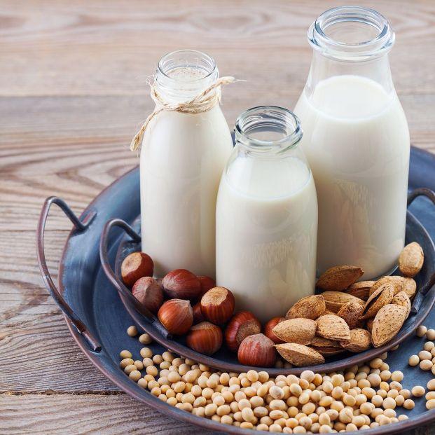 Algunos tipos de leche vegetal que debes conocer