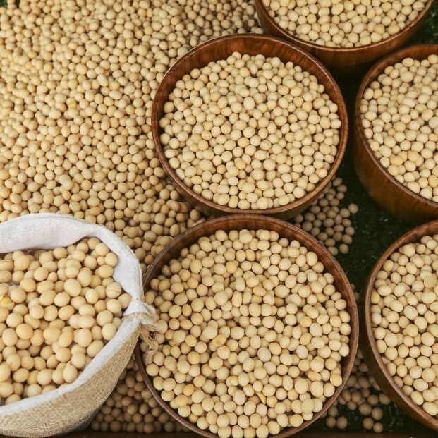¿Qué es y cómo se cocina la soja texturizada?