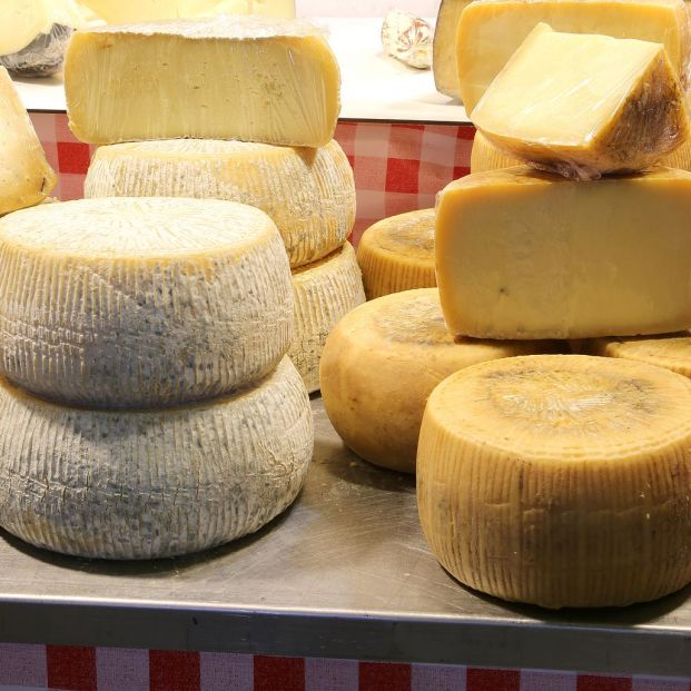 bigstock Cheese Made With Milk Oh Sheep 284087173