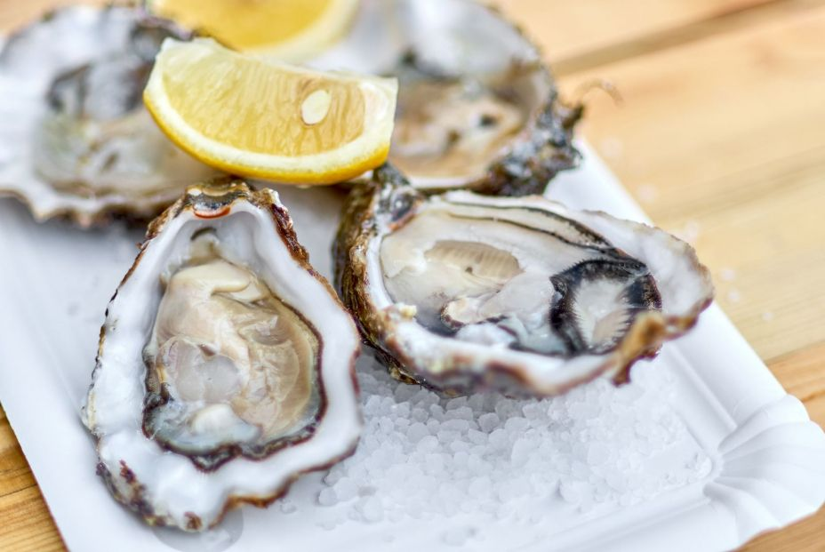 bigstock Tasty Fresh Oysters With Slice 205135924