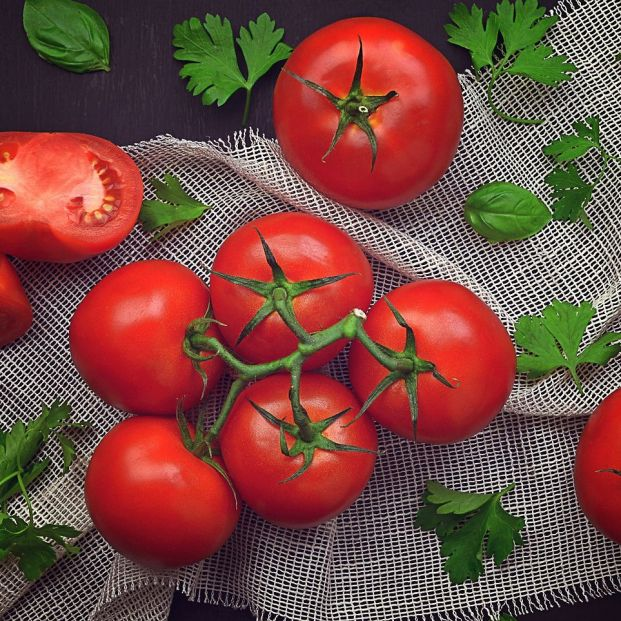 bigstock Red Tomato And Basil On A Dar 358919953