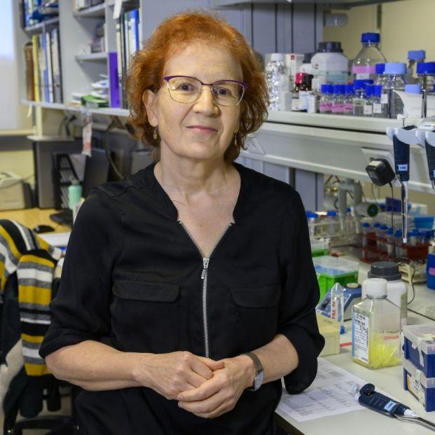 """La viróloga Margarita del Val advierte: """"España está ya en segunda ola de coronavirus"""""""