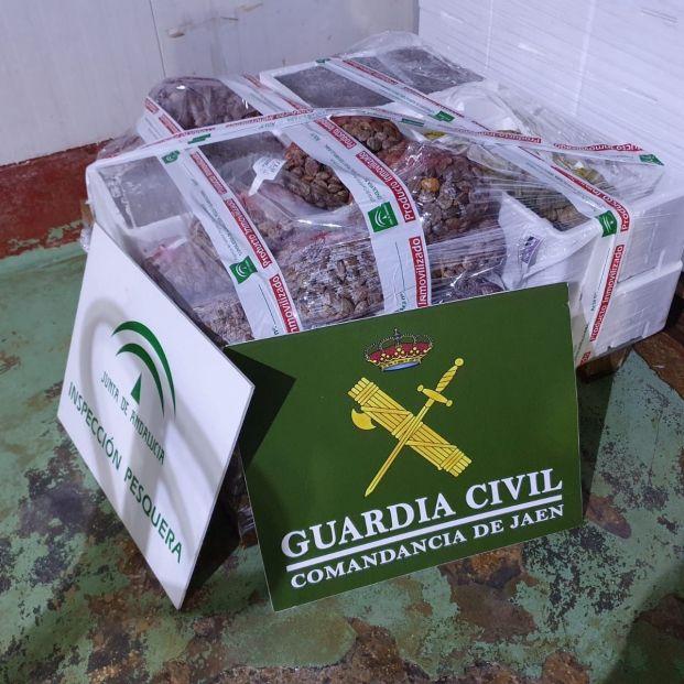 EuropaPress 3285850 almejas calamares intervenidos