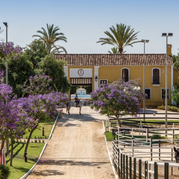 Descubre cuáles son las dos calles más caras de España