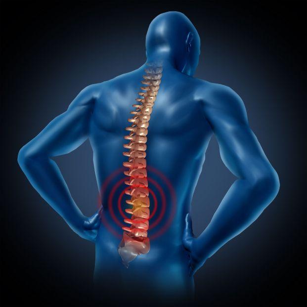 Rediseñan una enzima que podría ayudar a revertir lesiones en la médula espinal
