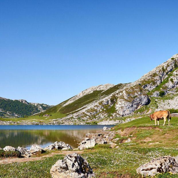 Los mejores lugares en el Principado para disfrutar del Día de Asturias