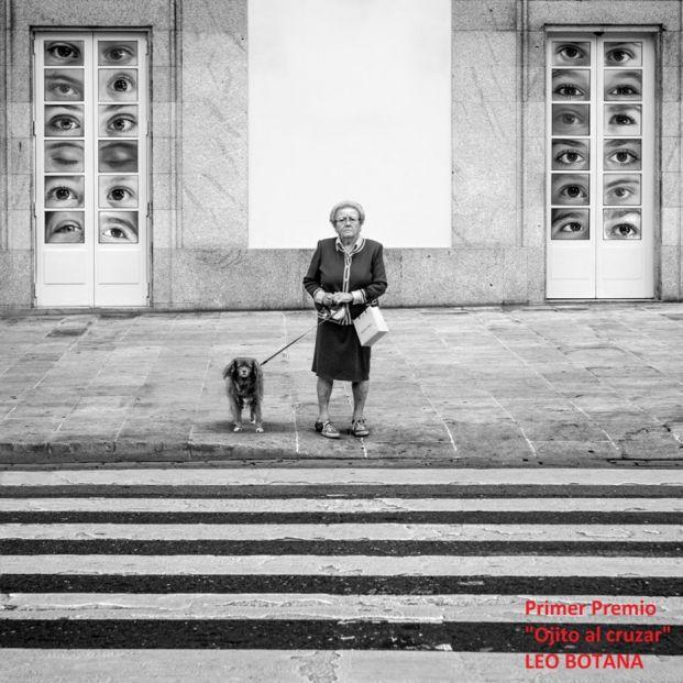 'Peatón, no atravieses tu vida', una exposición fotográfica para concienciar sobre movilidad vial