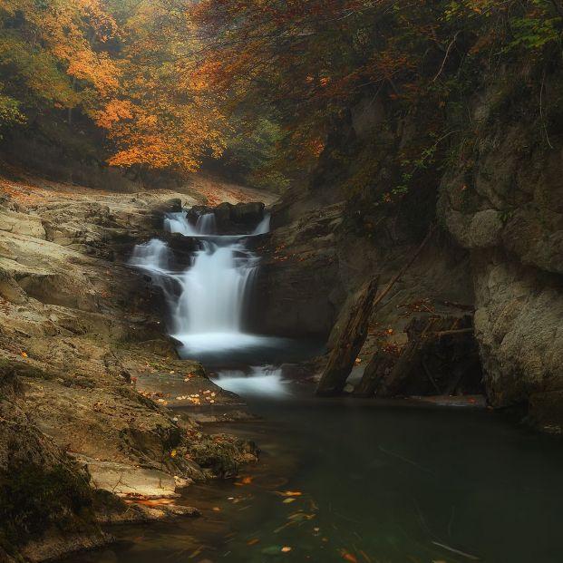 Una gran lugar para disfrutar del otoño: la Selva de Irati