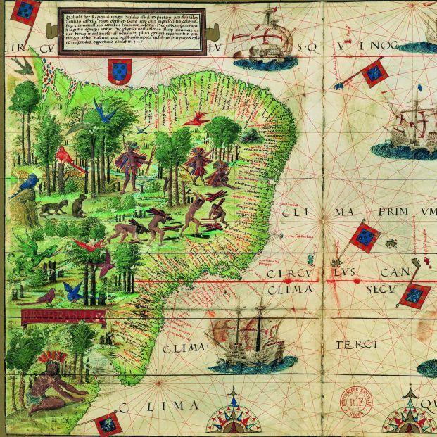 El CSIC publica un libro sobre los hallazgos botánicos de la expedición de Magallanes y Elcano