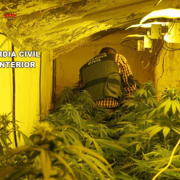 Tres detenidos por cultivar marihuana en la segunda residencia de sus padres octogenarios