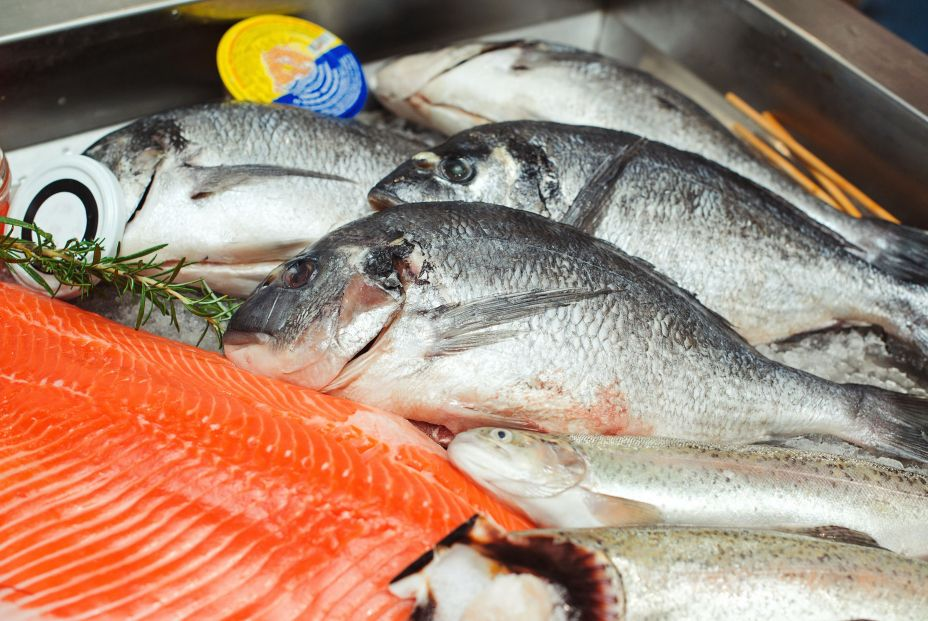 bigstock Fish Food At Shop Close Up R 378508786