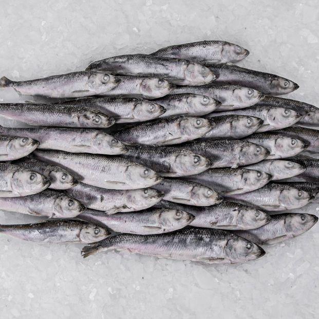 ¿Hay que lavar el pescado antes de comerlo? ¿En qué casos conviene congelarlo?