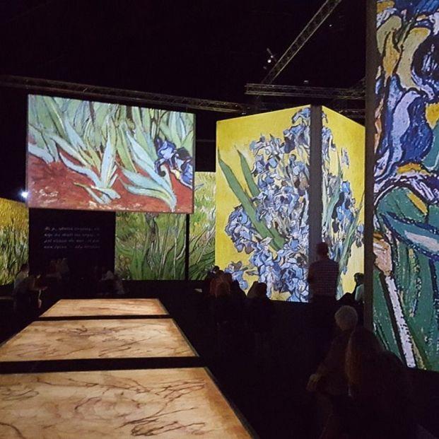 Una de las galerías de la exposición con pinturas de Van Gogh (Creative Commons)