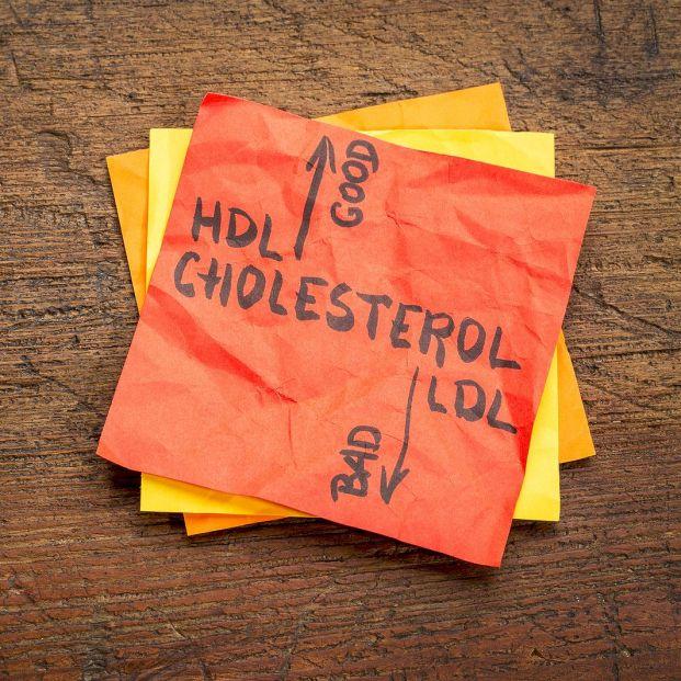 Beber leche de forma habitual no aumenta los niveles de colesterol, según un estudio