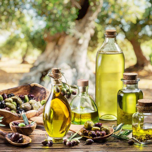 Diferencias entre aceite de oliva virgen extra arbequina, picual y hojiblanca